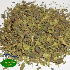 Nettle Mint